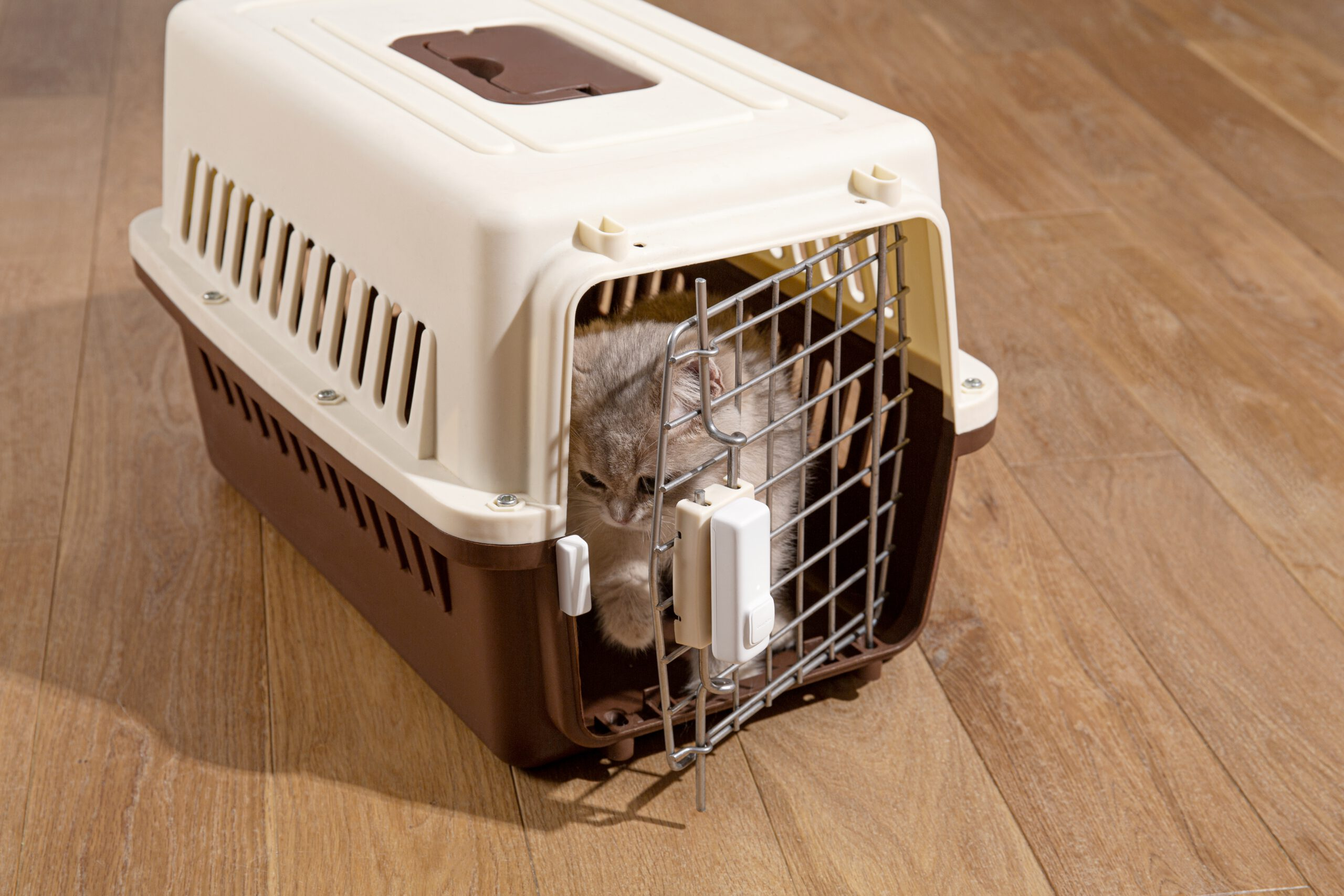 Nutzung eines Kontakt Sensors zur Überwachung von Tieren